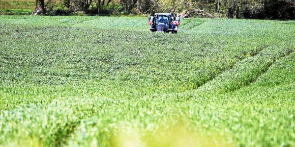 Glyphosate. Sa suppression aura un « coût substantiel »